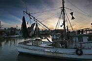 Galveston shrimp docks