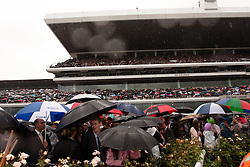 (c) under License to London News Pictures 02/11/2010. Umbrellas are out as it rains again at the 2010 Melbourne Cup