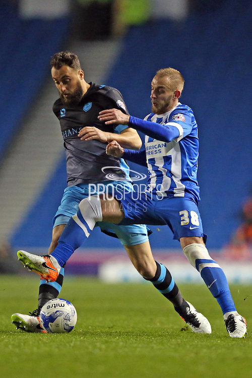 Brighton striker Jiri Skalak (38) during the Sky Bet Championship play-off second leg match between Brighton and Hove Albion and Sheffield Wednesday at the American Express Community Stadium, Brighton and Hove, England on 16 May 2016.