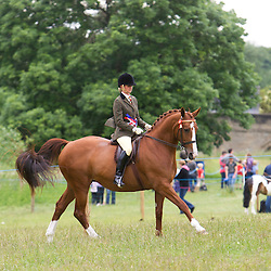 Arthington Show 2013 Equine Classes