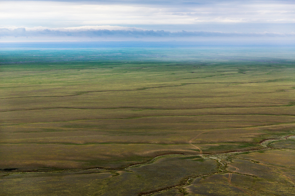 Dirt roads score the landscape throughout the Gobi Desert in Mongolia on July 27, 2012. © 2012 Tom Turner Photography.