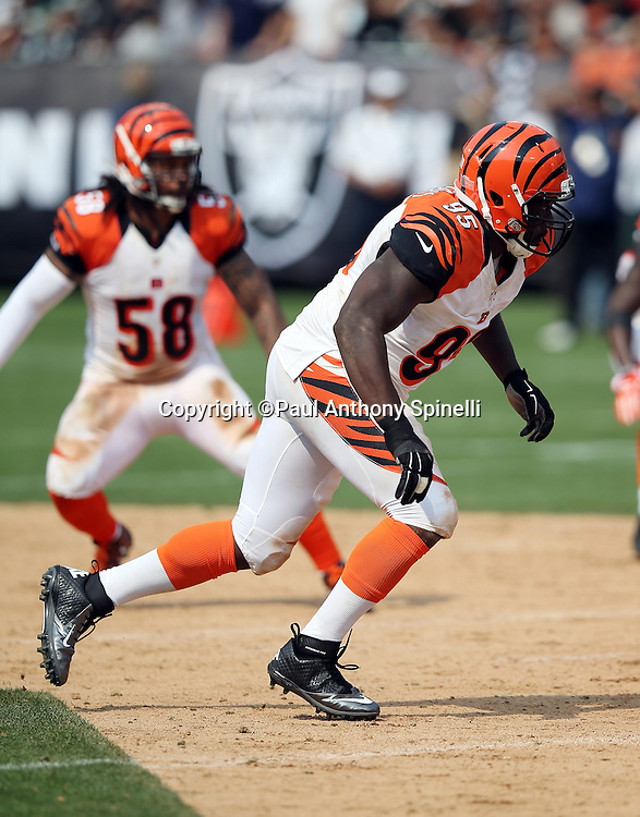 Cincinnati Bengals defensive end Wallace Gilberry (95) chases the action during the 2015 NFL week 1 regular season football game against the Oakland Raiders on Sunday, Sept. 13, 2015 in Oakland, Calif. The Bengals won the game 33-13. (©Paul Anthony Spinelli)