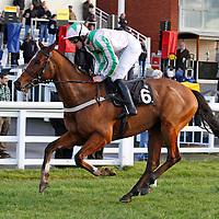Trenchant and Andrew Glassonbury winning the 1.30 race