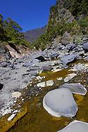 Alberto Carrera, Barranco de las Angustias, Taburiente River, Caldera de Taburiente National Park, Biosphere Reserve, ZEPA, LIC, La Palma, Canary Islands, Spain, Europe