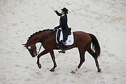 Tatiana Dorofeeva - Kartsevo Upperville<br /> Alltech FEI World Equestrian Games™ 2014 - Normandy, France.<br /> © DigiShots