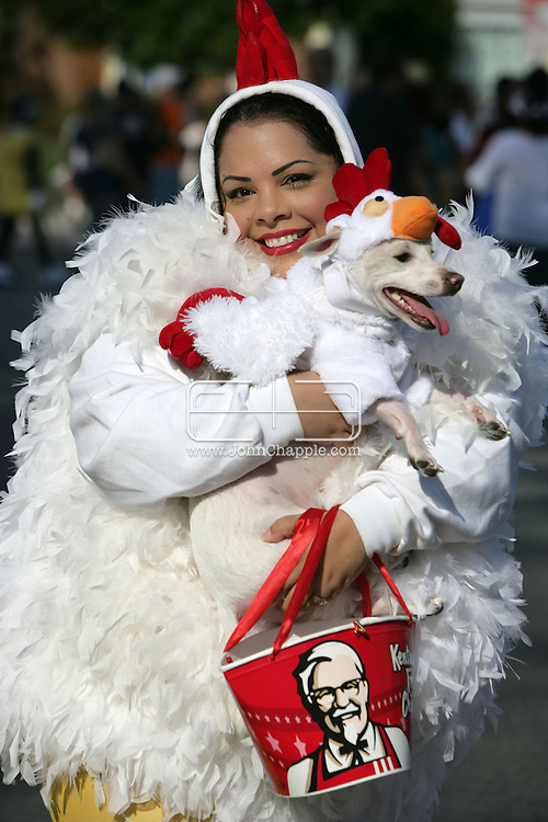 26th October 2007.Long Beach, California. Long Beach has been named one of the Top 9 Dog-Friendly Cities in the USA by Dog Fancy Magazine. You can see why at the annual 'Haute Dog Howl'oween Parade'. The world's largest canine-themed Halloween event, saw hundreds of dogs in outrageous outfits. Americans spend an astonishing $41 billion a year on their furry friends. Pictured Silvia Guzman with Petey a Chihuahua mix,both dressed as Kentucky Fried Chicken. © JOHN CHAPPLE / REBEL IMAGES Tel: 310 570 9100.