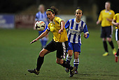 Brighton Ladies v Chichester City Ladies 120315