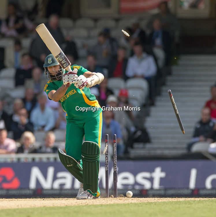 Hashim Amla is bowled by Jade Dernbach during the third NatWest Series one day international between England and South Africa at the Kia Oval, London. Photo: Graham Morris (Tel: +44(0)20 8969 4192 Email: sales@cricketpix.com) 31/08/12