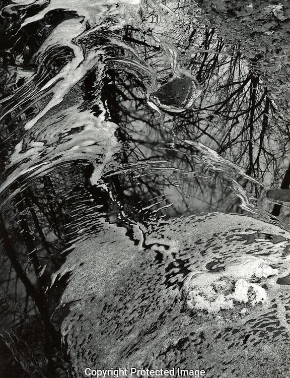 Hyla Brook, November, 1982