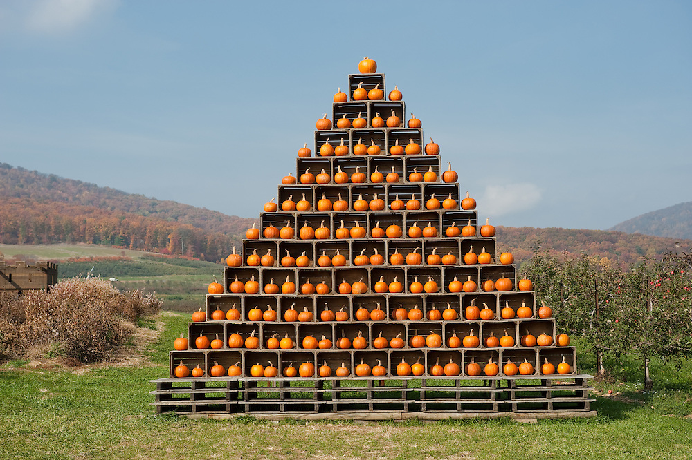 Pyramid of crates with pumpkins inside