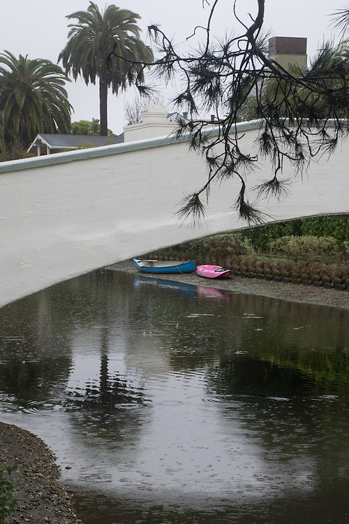 A bridge over one of the Venice canals on a rainy winter day with a strong tree branch and canoes. Venice, CA 1.5.2016