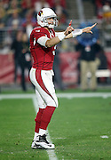 Arizona Cardinals quarterback Carson Palmer (3) points while the index finger on his right, throwing hand, is taped with red tape during the NFL NFC Divisional round playoff football game against the Green Bay Packers on Saturday, Jan. 16, 2016 in Glendale, Ariz. The Cardinals won the game in overtime 26-20. (©Paul Anthony Spinelli)
