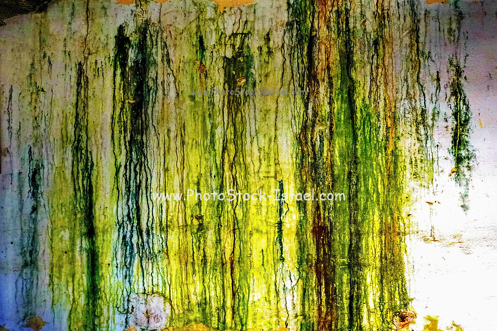 paint on wall - green and yellow Abstract background