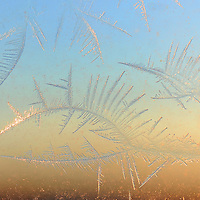 Ice crystals form on a window as temperatures drop below zero Friday, Feb. 7, 2014. (Jay Pickthorn/Argus Leader)