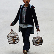 A Black Hmong boy tries to sell his birds in a cage in Sapa, Northern Vietnam. Sapa and the surrounding highlands are close to the Chinese border in Northern Vietnam and is inhabited by highland minorities including Hmong and Dzao groups. Sapa is now a thriving tourist destination for travelers taking the night train from Hanoi. Sapa, Vietnam. 16th March 2012. Photo Tim Clayton
