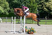 Balade de Normandie<br /> Dutch Sport Horse Sales 2016<br /> © DigiShots