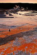 Aguas termales y detalle bacteria termofílica, Upper Geyser Basin, Yellowstone NP, Wyoming (Estados Unidos)