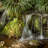 A water source near the Yamazaki Distillery in Yamazaki, Osaka Prefecture, Japan, November 6, 2015. Gary He/DRAMBOX MEDIA LIBRARY