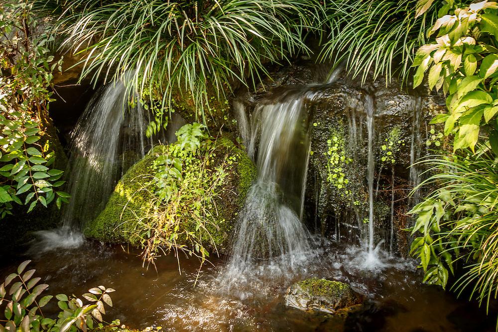 A water source near the Yamazaki Distillery in Yamazaki, Osaka Prefecture, Japan, November 6, 2015. Gary He/DRAMBOX MEDIA LIBRARY
