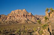 Red Rock Canyon, Las Vegas, Nevada, USA<br />