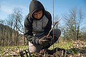St. Innocent vineyard planting March 2018
