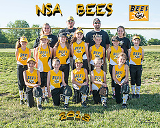 NSA Bees Team & Individual, June 10, 2013