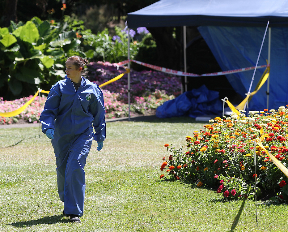 A team of 38 police are joined by ESR staff working on the homicide investigation following the discovery of a body in Kuirau Park, Rotorua, New Zealand, Tuesday,  January 24, 2012. Credit:SNPA / Peter Graney.