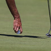 A golfer removes the golf ball from the hole after putting. Photo Tim Clayton