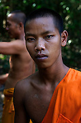 A resident monk at the monastery of Angkor Thom labours in the surrounding forest, Siem Reap, Cambodia