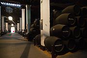 Oak barrels of maturing sherry wine in cellar, Gonzalez Byass bodega, Jerez de la Frontera, Cadiz province, Spain