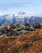 Berserkjahraun in west-Iceland Snæfellsnes