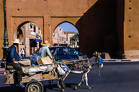Morocco, Marrakesh. Donkey trolley outside one of the gates in the wall surrounding the medina in Marrakesh.