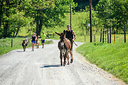 Peach Bottom, Pennsylvania - May 17, 2017: Donkey runners (front to back) Chris McDougall, Don Korenkiewicz, and Ruby Rublesky run with Flower, Sherman, and Matilda, respectively among the Amish farms in rural Pennsylvania Wednesday may 17, 2017.<br /> <br /> CREDIT: Matt Roth for The New York Times<br /> Assignment ID: 30206505A