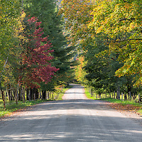 "The farm ""disappearing"" road flanked by fall foliage. Near Stowe, Vermont."