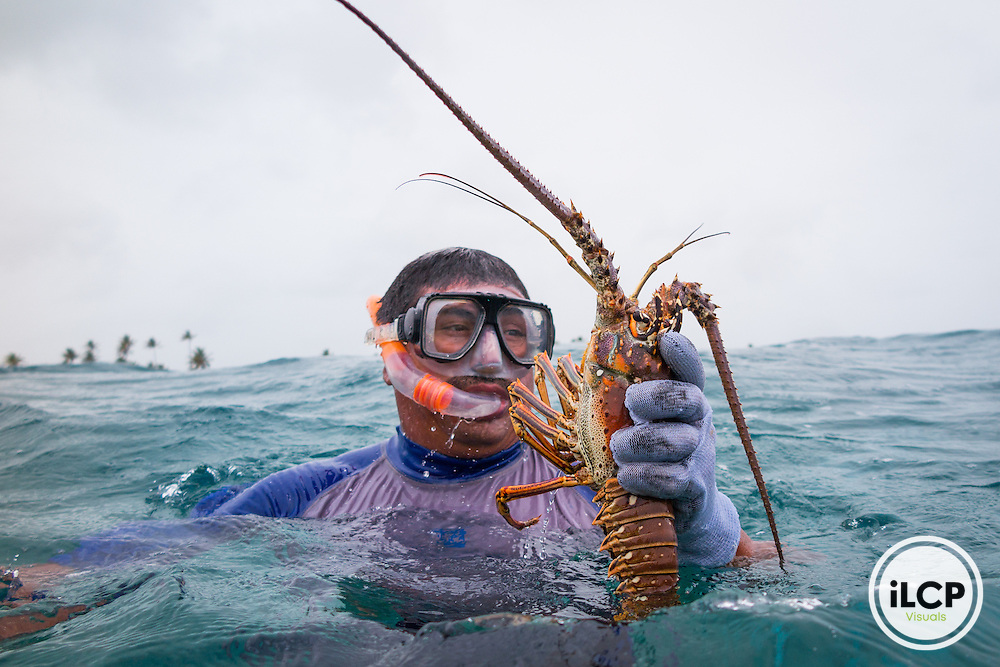 Arturo Lopez free dives for live lobster in Punta Herrero, a small, remote fishing camp in the Sian Ka'an Biosphere Reserve in southernmost Caribbean Mexico. Fishermen use 'casitas cubanas', small concrete hutches that provide shelter and attract lobsters to concentrated areas where they can be more sustainably and effectively harvested by hand. This helps avoid by-catch, taking berried females and juveniles, and unnecessary impact to the reef. By limiting the fisherman's range through free diving it also leaves a larger population of larger lobsters in deeper water that can 'resupply' the shallow water populations. Lobsters are held in live tanks and driven every few days out to the cites where buyers purchase them for regional distribution to hotels and restaurants in places like Cancun. From a 2014 iLCP (International League of Conservation Photographers) expedition project documenting the people and places of the Mexican section of the Mesoamerican Reef (MAR).