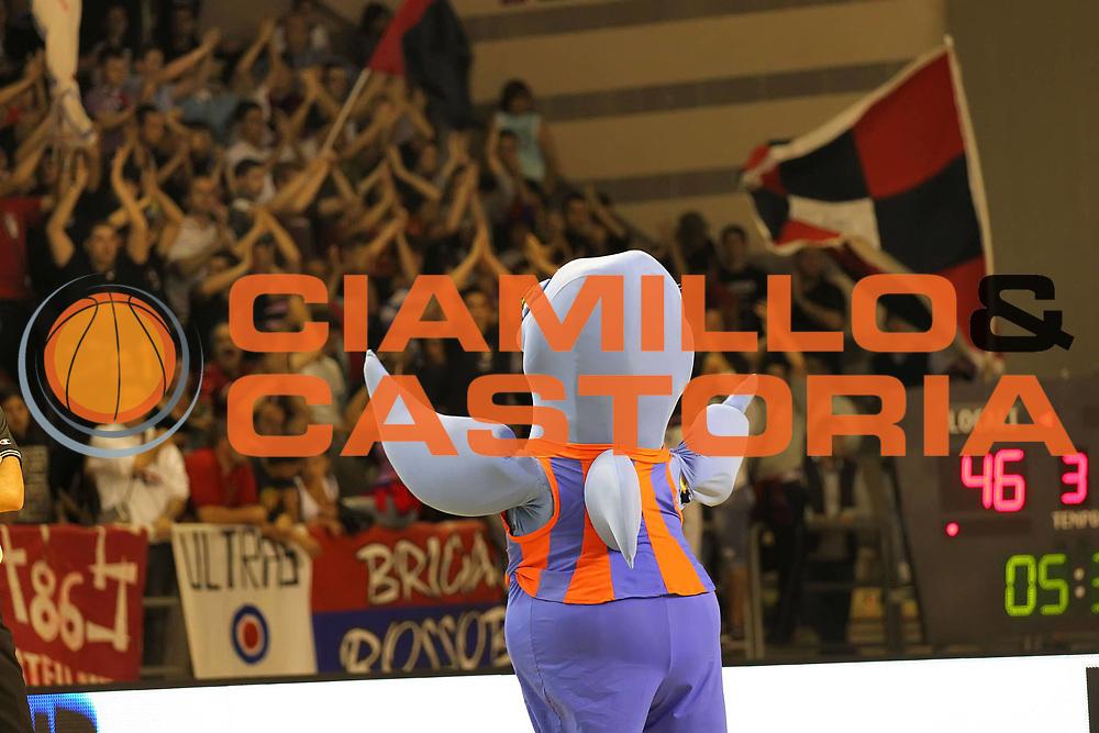 DESCRIZIONE : Taranto Lega A1 Femminile 2009-10 Play Off Finale Gara 5<br /> Cras Basket Taranto Famila Wuber Schio<br /> GIOCATORE : Mascotte<br /> SQUADRA : Cras Basket Taranto<br /> EVENTO : Campionato Lega A1 Femminile 2009-2010<br /> GARA : Cras Basket Taranto Famila Wuber Schio<br /> DATA : 16/05/2010<br /> CATEGORIA : tifo fan supporter<br /> SPORT : Pallacanestro<br /> AUTORE : Agenzia Ciamillo-Castoria/ElioCastoria<br /> Galleria : Lega Basket Femminile 2009-2010<br /> Fotonotizia : Taranto Campionato Italiano Femminile Lega A1 2009-2010 Play Off Finale Gara 5 Cras Basket Taranto Famila Wuber Schio<br /> Predefinita :