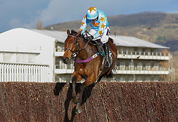 Un De Sceaux ridden by Ruby Walsh clears the last fence before going on to win The Spectra Cyber Soloutions Clarence House Steeple Chase Race run during Festival Trials Day at Cheltenham Racecourse.