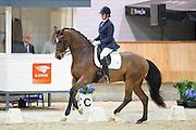 Sandy van Boxmeer Westerhuis - Earth Wind and Fire<br /> KNHS Indoorkampioenschappen 2017<br /> © DigiShots