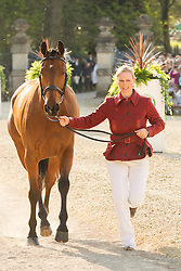 High Kingdom shows high spirits as Zara Phillips (GBR) leads him up for the vet's inspection during the trot up at the 2013 Mitsubishi Motors Badminton Horse Trials, Thursday 02  May  2013.  Badminton, Gloucs, UK. Photo by: Mark Chappell / i-Images