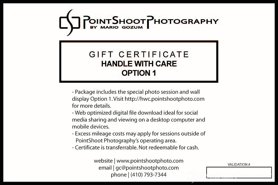 PointShoot Photography Handle With Care - Option 1 gift certificate. Total Package Price: $459.00