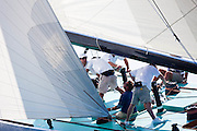 Intrepid, 12 Meter Class, sailing in the Opera House Cup Regatta.