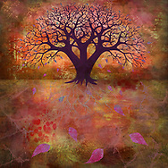 Bare tree shape on a glowing warm orange fall background with colorful falling leaves