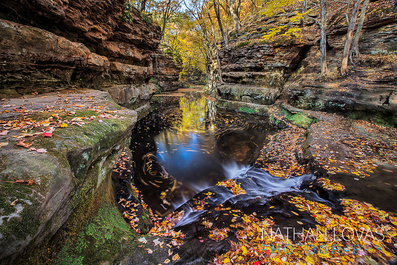 River canyon with fall foliage;  Wisconsin.