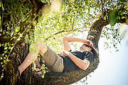Man taking a nap in a tree.