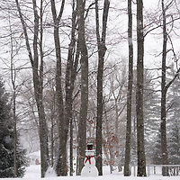 http:/Duncan.co/snowman-and-trees