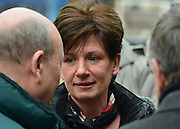 © Licensed to London News Pictures. 12/02/2013. Eastleigh, UK DIANE JAMES campaigns. Diane James, chosen yesterday to fight the Eastleigh by election for UKIP, campaigns with Nigel Farage, leader of the party, in Easleigh's Market Street today 12th February 2013. Photo credit : Stephen Simpson/LNP