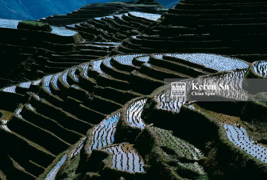 Landscape of terraced rice paddies filled with water, Longsheng, Guangxi Province, China