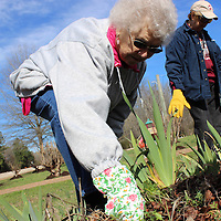 RAY VAN DUSEN/BUY AT PHOTOS.MONROECOUNTYJOURNAL.COM<br /> From left, Keep Monroe County Beautiful volunteers Mary Carter, Nancy Payne and Edna Cox work on pulling weeds from an iris bed at Hamilton Community Center.
