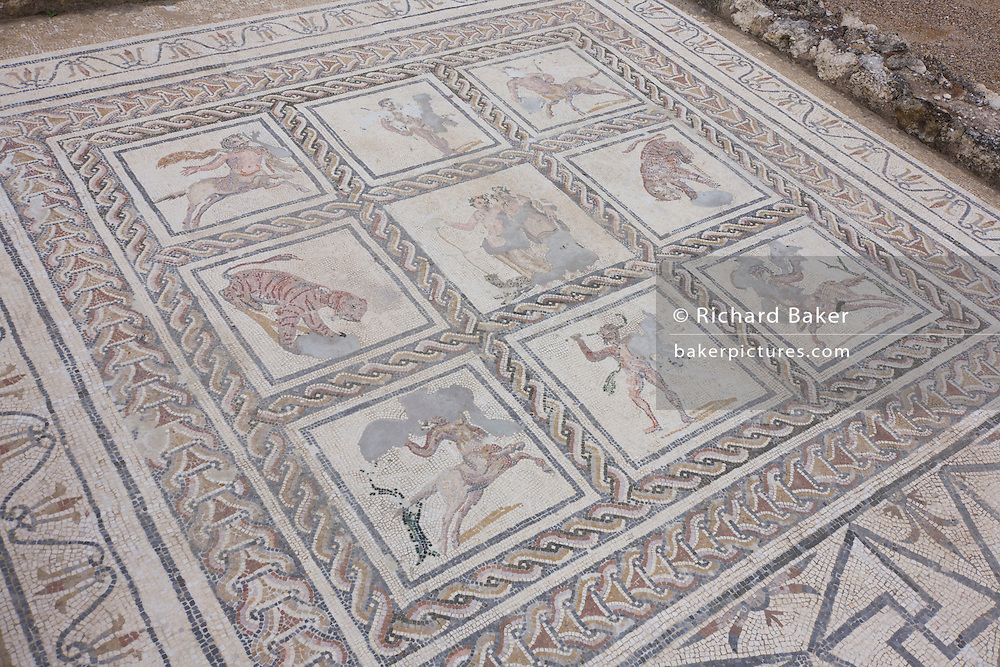 Mosaic representations of Roman animals in the abandoned city of Italica, near Seville. The central mosaic in the House of the Bird Mosaic which is the most Italian of all houses excavated in Italica, consists of thirty-five small square mosaics that surround a larger, central square scene.