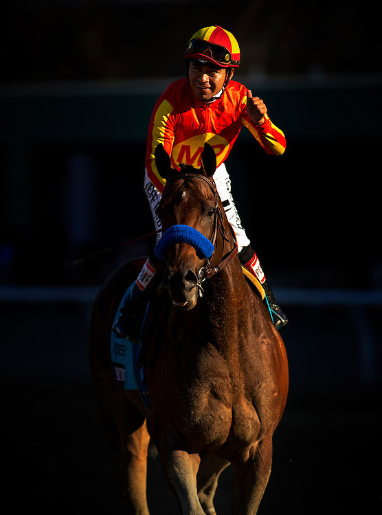 Secret Circle, ridden by Martin Garcia wins the Breeders' Cup Sprinton November 2, 2013 at Santa Anita Park in Arcadia, California during the 30th running of the Breeders' Cup.(Alex Evers/ Eclipse Sportswire)